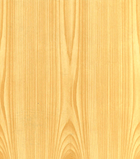 Коллекция Основные цвета: Сосна